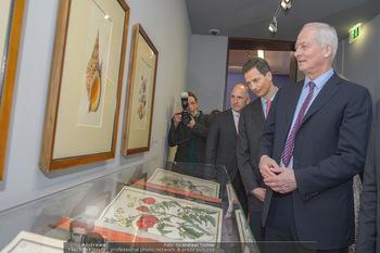 Rubens bis Makart Ausstellungseröffnung - Albertina, Wien - Fr 15.02.2019 - Fürst Hans ADAM II, Alois VON UND ZU LIECHTENSTEIN, Adrian HASL62