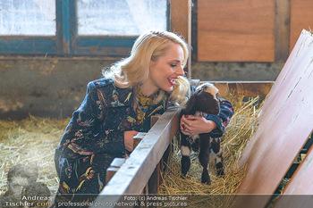 Fotoshooting Silvia Schneider - Div. Locations Österreich - Mo 25.02.2019 - Silvia SCHNEIDER mit neugeborenem Lamm, junges Schaf72