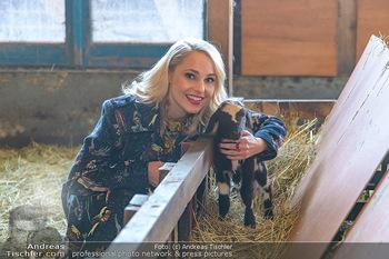 Fotoshooting Silvia Schneider - Div. Locations Österreich - Mo 25.02.2019 - Silvia SCHNEIDER mit neugeborenem Lamm, junges Schaf73