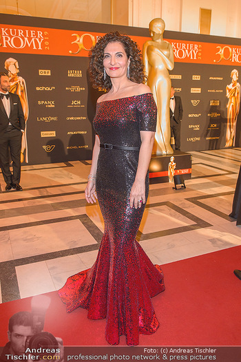 Romy Gala - Red Carpet - Hofburg Wien - Sa 13.04.2019 - Proschat MADANI193