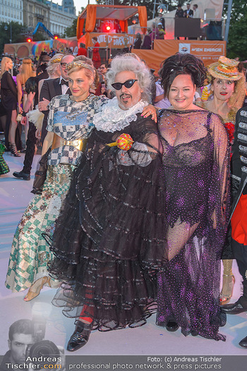 Lifeball red carpet - Rathaus Wien - Sa 08.06.2019 - 91