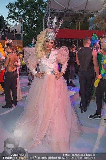 Lifeball red carpet - Rathaus Wien - Sa 08.06.2019 - 101