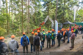 AustroFoma 2019 - Forchtenstein - Mi 09.10.2019 - 151