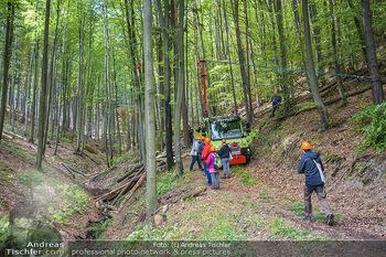 AustroFoma 2019 - Forchtenstein - Mi 09.10.2019 - 190