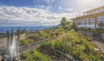 Österreich in Farben - Österreich - Do 31.10.2019 - Ausblick Natur Pool Almsee Urlaub Hotel Feuerberg Mountain Resor40