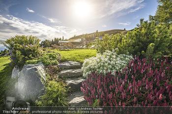 Österreich in Farben - Österreich - Do 31.10.2019 - Blumen Natur Pool Almsee Urlaub Hotel Feuerberg Mountain Resort,42