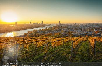 Österreich in Farben - Österreich - Do 31.10.2019 - Wien Sonnenaufgang Kahlenberg Weinberge Donau UNO City Herbst So101