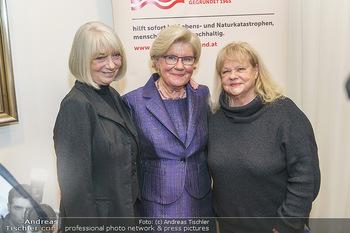 Neujahrsempfang - Hilfe-im-eigenen-Land Office - Mi 15.01.2020 - Sissi (Sissy) PRÖLL, Erika PLUHAR, Marianne MENDT1