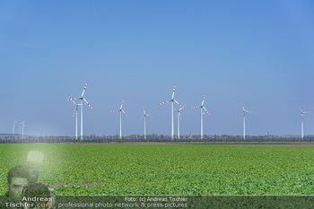 Fototour Großraum Hainburg - Hainburg, Carnuntum - Fr 27.03.2020 - Windräder Windpark Windradpark Stromerzeugung Umwelt Nachhaltig49
