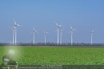 Fototour Großraum Hainburg - Hainburg, Carnuntum - Fr 27.03.2020 - Windräder Windpark Windradpark Stromerzeugung Umwelt Nachhaltig50