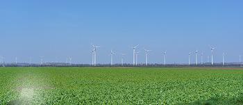 Fototour Großraum Hainburg - Hainburg, Carnuntum - Fr 27.03.2020 - Windräder Windpark Windradpark Stromerzeugung Umwelt Nachhaltig51