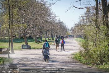 Corona Feature - Wien, NÖ - So 05.04.2020 - Spaziergänger Steinhofgründe Freizeit Frühlingswetter Coronav4