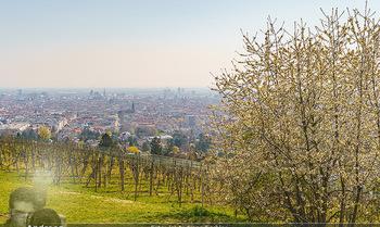 Corona Feature - Wien, NÖ - So 05.04.2020 - Blick im Frühling über Wien Wilhelminenberg Austria Trend Hote13
