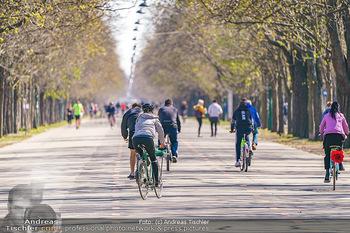 Corona Feature - Wien, NÖ - So 05.04.2020 - Großer Andrang Spaziergänger Jogger Läufer Radfahrer Coronavi25