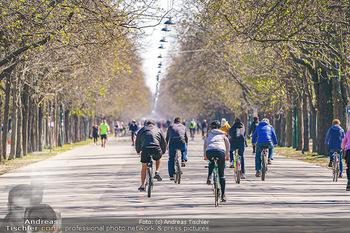 Corona Feature - Wien, NÖ - So 05.04.2020 - Großer Andrang Spaziergänger Jogger Läufer Radfahrer Coronavi26