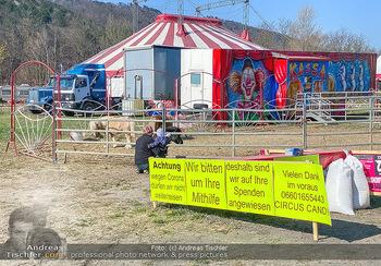 Corona Feature - Wien, NÖ - So 05.04.2020 - gestrandeter Zirkus bei Berndorf NÖ Tiere Kamele Pferde Ponys W41