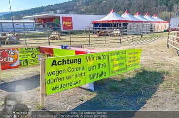 Corona Feature - Wien, NÖ - So 05.04.2020 - gestrandeter Zirkus bei Berndorf NÖ Tiere Kamele Pferde Ponys W43