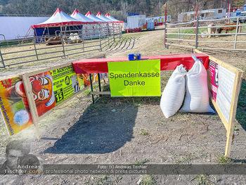 Corona Feature - Wien, NÖ - So 05.04.2020 - gestrandeter Zirkus bei Berndorf NÖ Tiere Kamele Pferde Ponys W44