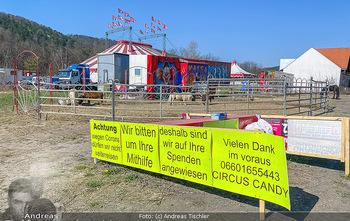 Corona Feature - Wien, NÖ - So 05.04.2020 - gestrandeter Zirkus bei Berndorf NÖ Tiere Kamele Pferde Ponys W45