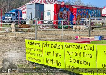 Corona Feature - Wien, NÖ - So 05.04.2020 - gestrandeter Zirkus bei Berndorf NÖ Tiere Kamele Pferde Ponys W46
