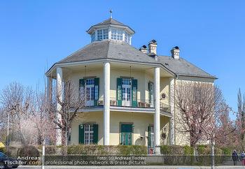 Corona Feature - Wien, NÖ - So 05.04.2020 - Lusthaus im Wiener Prater Prater Hauptalle Restaurant blauer Him102