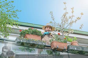 Promis während Corona - Wien - Mi 15.04.2020 - Clemens UNTERREINER pflanzt Blumen auf seinem Balkon und schneid9