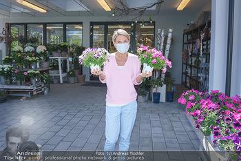 Promis während Corona - Wien - Mi 15.04.2020 - Kristina SPRENGER im Blumenfachgeschäft Gärtnerei Chwala Bad V34