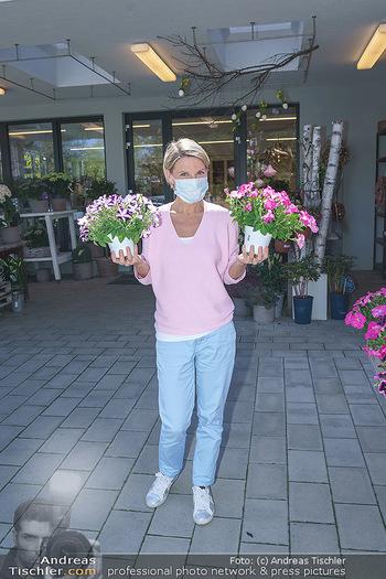 Promis während Corona - Wien - Mi 15.04.2020 - Kristina SPRENGER im Blumenfachgeschäft Gärtnerei Chwala Bad V35