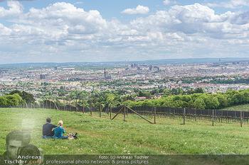 Blick über Wien - Wien - Fr 01.05.2020 - Fernblick über Wien von der Bellevuewiese bei Schönwetter2