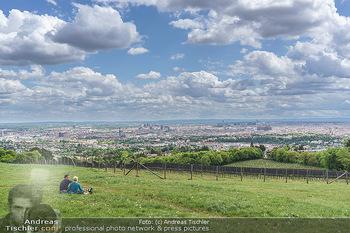 Blick über Wien - Wien - Fr 01.05.2020 - Fernblick über Wien von der Bellevuewiese bei Schönwetter3