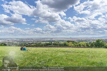 Blick über Wien - Wien - Fr 01.05.2020 - Fernblick über Wien von der Bellevuewiese bei Schönwetter5