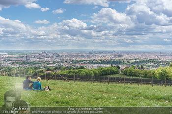 Blick über Wien - Wien - Fr 01.05.2020 - Fernblick über Wien von der Bellevuewiese bei Schönwetter6