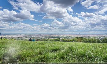 Blick über Wien - Wien - Fr 01.05.2020 - Fernblick über Wien von der Bellevuewiese bei Schönwetter7