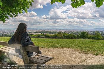 Blick über Wien - Wien - Fr 01.05.2020 - Fernblick über Wien von der Bellevuewiese bei Schönwetter9