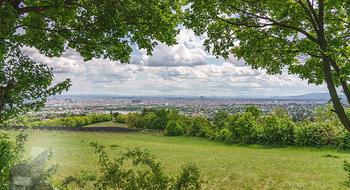 Blick über Wien - Wien - Fr 01.05.2020 - Fernblick über Wien von der Bellevuewiese bei Schönwetter10