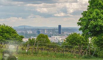 Blick über Wien - Wien - Fr 01.05.2020 - Fernblick über Wien von der Bellevuewiese bei Schönwetter11