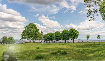 Blick über Wien - Wien - Fr 01.05.2020 - Fernblick über Wien von der Bellevuewiese bei Schönwetter12