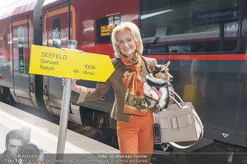 Künstler Abreise nach Seefeld - Hauptbahnhof, Wien - Do 11.06.2020 - Elisabeth GÜRTLER mit Hund Ella1