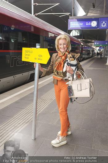 Künstler Abreise nach Seefeld - Hauptbahnhof, Wien - Do 11.06.2020 - Elisabeth GÜRTLER mit Hund Ella2