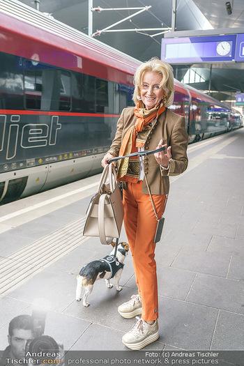Künstler Abreise nach Seefeld - Hauptbahnhof, Wien - Do 11.06.2020 - Elisabeth GÜRTLER mit Hund Ella7