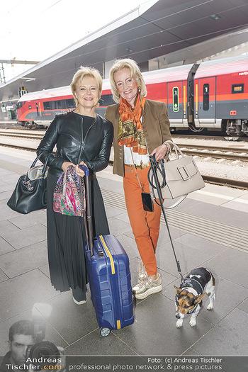 Künstler Abreise nach Seefeld - Hauptbahnhof, Wien - Do 11.06.2020 - Ildiko RAIMONDI Elisabeth GÜRTLER mit Hund Ella14