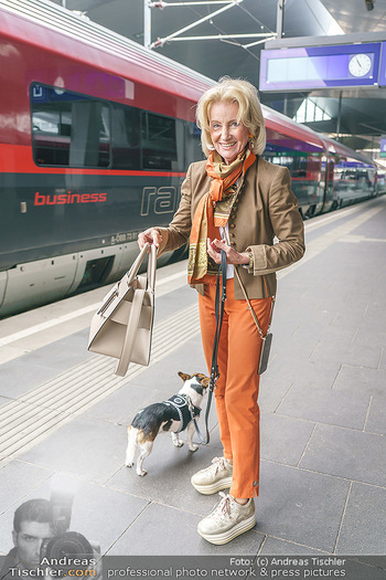 Werbeshooting für Festspielprogramm - Theaterpark Berndorf - Sa 13.06.2020 - Elisabeth GÜRTLER mit Hund Ella11