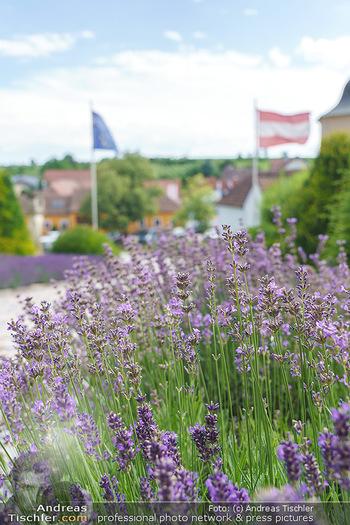 Ein fest für Dominique Meyer - Schloss Gobelsburg, NÖ - Mi 01.07.2020 - EU-Flagge der Europäischen Union und Österreich Fahne18