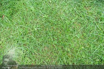 Climate Kirtag - Heldenplatz - Do 17.09.2020 - Wiese, Rasen, Gras, ungemäht, natur, grün155