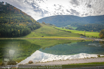 Neue Chalets am Schneeberg - Puchberg am Schneeberg - Fr 23.10.2020 - Natürlicher See Wasser Spieglung Tiere Pferde und Kühe grün H46