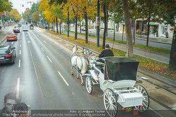 Big Bus Citytour - Wien - So 25.10.2020 - Verkehr auf Ringstraße Schubertring, Stau wegen Fiaker, Fahrspu21