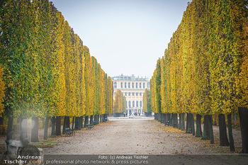 Big Bus Citytour - Wien - So 25.10.2020 - Herbst in Schönbrunn, Bäume, Baumschnitt, herbstlich verfärbt35