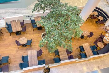 Corona Lokalaugenschein SCS - SCS Vösendorf - Mo 07.12.2020 - Gesperrter Gastro Gastronomiebereich, Absperrband, Lokal Restaur32