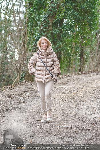 Spaziergang mit Gerda Rogers - Baden - Sa 30.01.2021 - Gerda ROGERS4