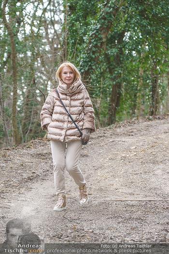 Spaziergang mit Gerda Rogers - Baden - Sa 30.01.2021 - Gerda ROGERS5
